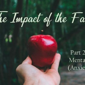 The Impact of the Fall – Part 2