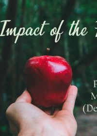 The Impact of the Fall – Part 3